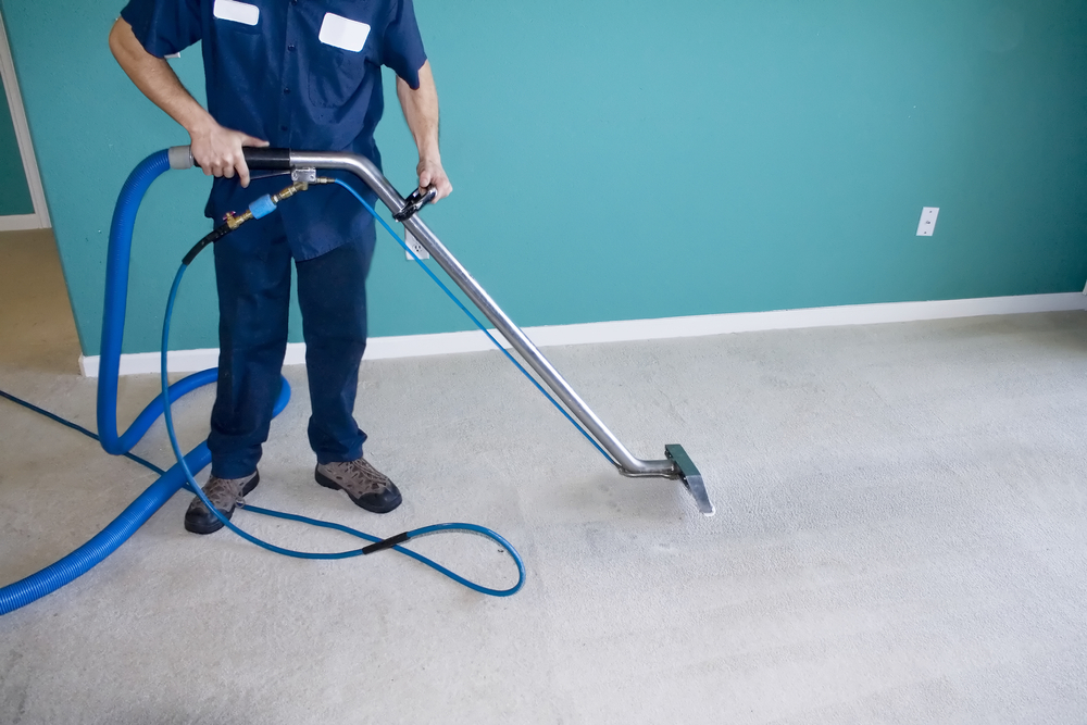 Commercial Carpet Cleaning Sydney Waratah Carpet