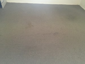Stained living/dining area carpets