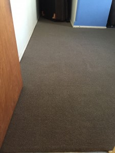 Carpets in entry way after clean