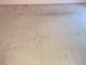 Before Dry cleaning Photo. TV Room carpet worn and stained