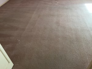 Photo of the TV room after it was dry cleaned