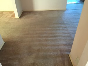 Photo after entrance to living/dining area was dry-cleaned