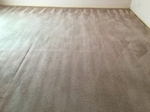 Photo of living area after it was dry cleaned